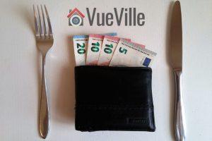 Best Budget IP Cameras - VueVille