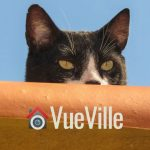 Best Wireless Hidden Camera - VueVille