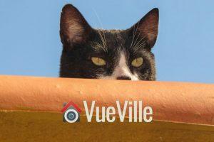 Best Wireless Hidden Camera - VueVille